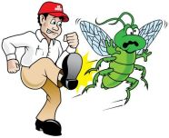 BugBGone